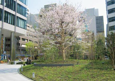 shinagawaseason_top.jpg